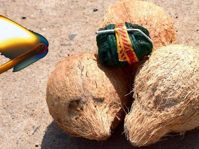 3 Coconuts Vs Chota Bomb | Diwali Special PRANK Videos | Most FUNNY Diwali Crackers PRANK Video