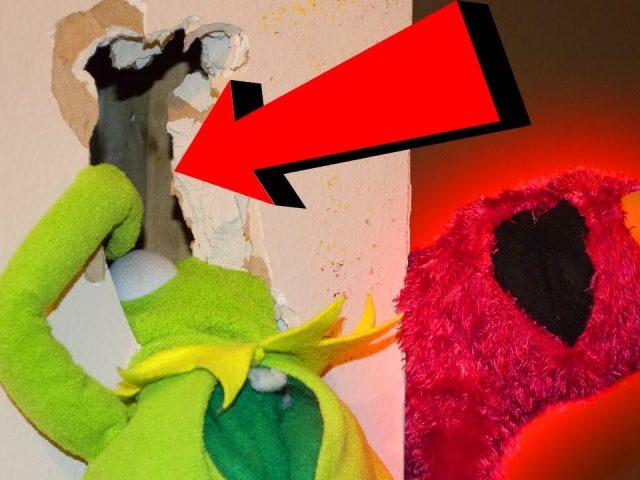 Elmo Pranks Kermit the Frog GONE WRONG!