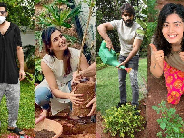 TFI Celebrities Green India Challenge | Prabhas | Samantha | Karthikeya | Rashmika | Aarvi Media